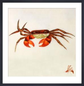 Crab by Deborah Schenck