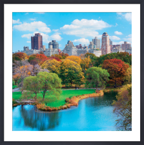 Central Park in Autumn, Manhattan by Songquan Deng