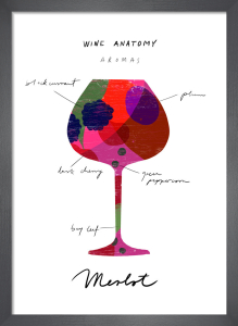 Wine Anatomy: Merlot by Ana Zaja Petrak