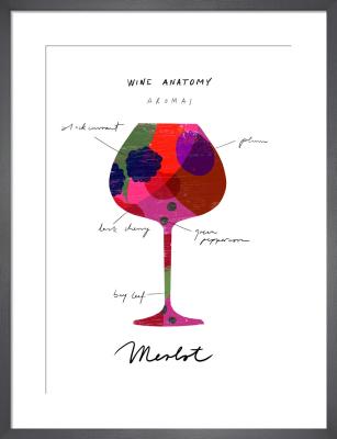 Wine Anatomy: Merlot by Ana Zaja Petrak
