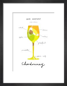 Wine Anatomy: Chardonnay by Ana Zaja Petrak