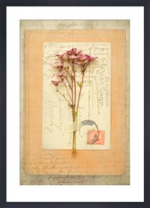 Browning by Deborah Schenck