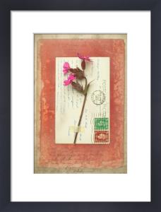 Tennyson by Deborah Schenck