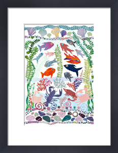 Fish & Shells by Jane Robbins