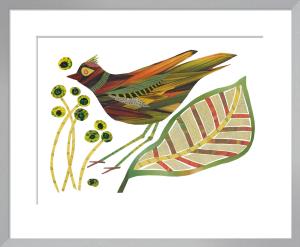 Grass Bird by Jane Robbins