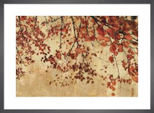 Colorful Season by Pela + Silverman