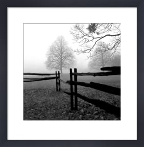 Fence in the Mist by Harold Silverman