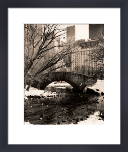 Central Park Bridges 4 by Christopher Bliss