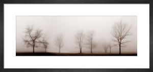 Misty Meadow by Erin Clark