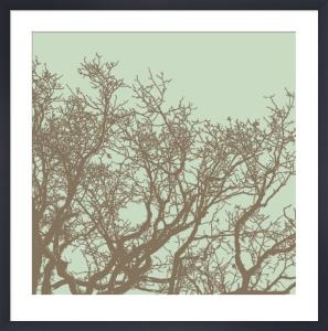 Winter Tree II by Erin Clark