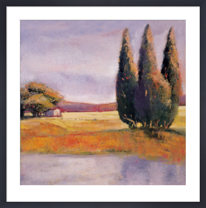 Sunset Cypress by Adina Langford