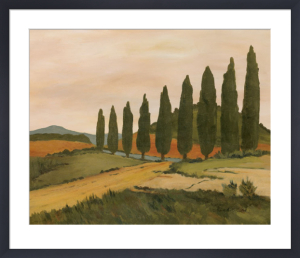 Shady Tuscan Road by Jean Clark