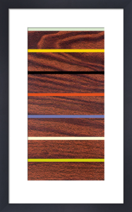 Woodgrain & Stripe by Dan Bleier