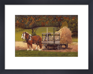 Amish Harvest by Kathleen Green