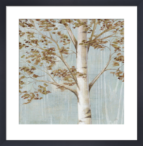 Birch Study I by Daphne Brissonnet