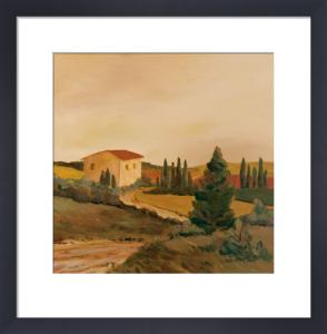 Sunny Tuscan Fields by Jean Clark