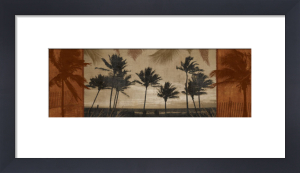 Sunlit Palms I by Harold Silverman