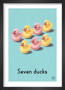 Seven ducks by Ladybird Books'
