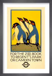 For the Zoo, book to Regent's Park, 1921 by Charles Paine