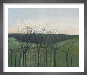 Bengrove by Andrew Lansley