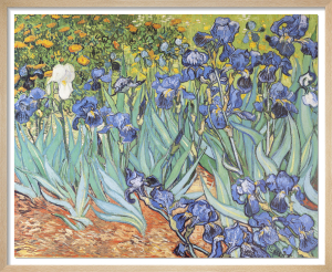 Irises in the Garden by Vincent Van Gogh