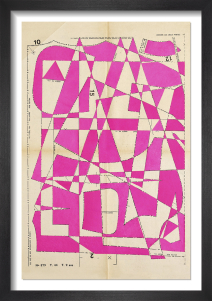 Lost Gardens No.8 (pink) by Hormazd Narielwalla