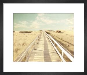 Run Away by Robert Cadloff