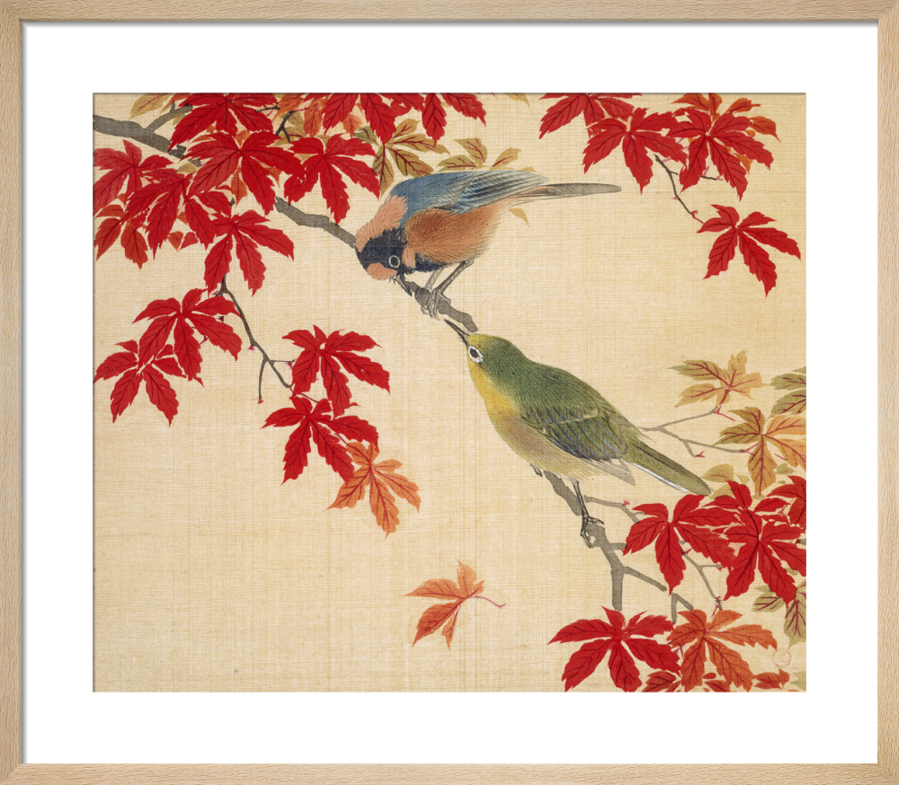 Two birds perching on the branches of a Red Maple by Anonymous