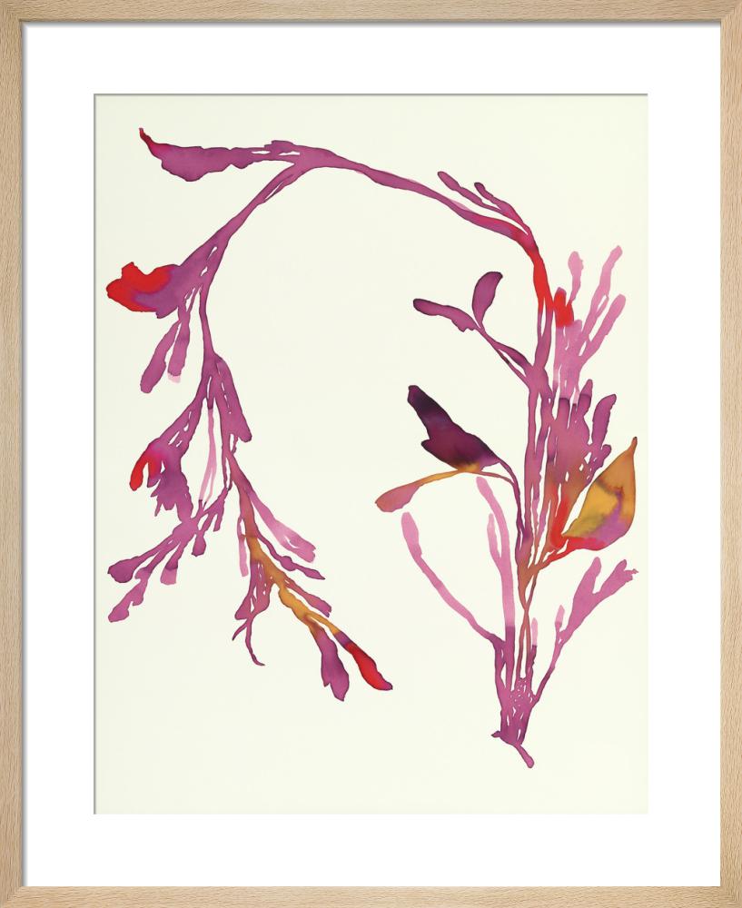 Plants 13 by Susan Hable