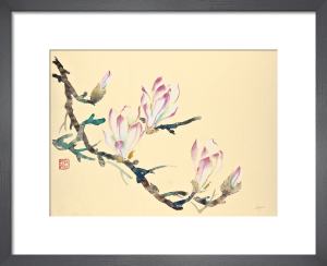 Cherry Blossom by Jane Dwight
