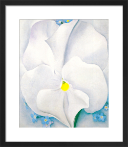 White Pansy, 1927 by Georgia O'Keeffe