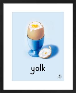 yolk by Ladybird Books'