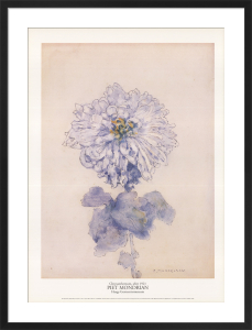 Chrysanthemum, after 1921 by Piet Mondrian