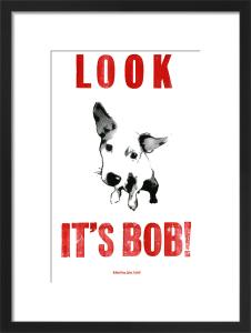 Look It's Bob! by Helen Ingham