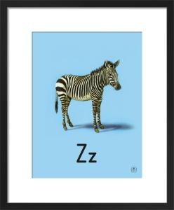 Z is for zebra by Ladybird Books'