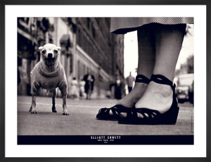 New York, 1946 by Elliott Erwitt