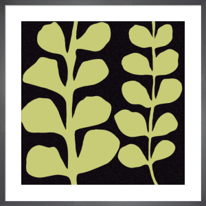 Green Fern on Black by Denise Duplock