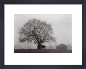 Pleasant Hill by Jim Morris