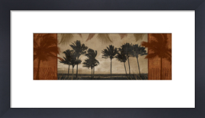 Sunlit Palms II by Harold Silverman
