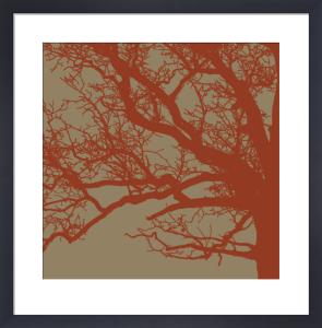 Cinnamon Tree III by Erin Clark