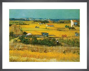 Field by Vincent Van Gogh