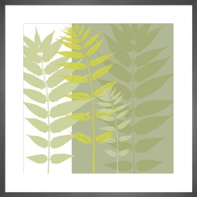 Field Greens by Erin Clark