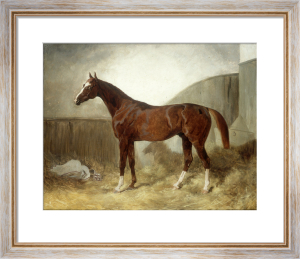 A Bay Racehorse in a Stable by Thomas Barratt