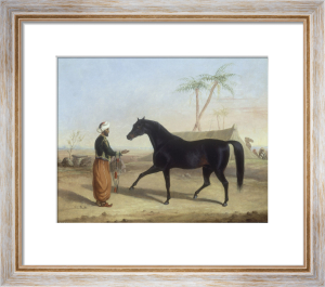 A Dark Bay Stallion held by an Arab Groom in an Encampment by George Henry Laporte