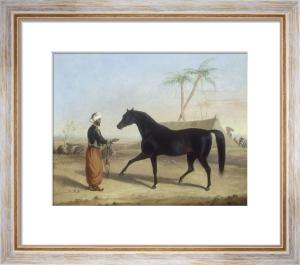 A Dark Bay Stallion held by an Arab Groom in an Encampment by George Henry Laporte