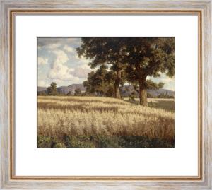 Cornfields in Summer by Ivan Federovich Choultse