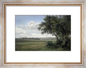 Landscape with Storks, 1879 by Janus la Cour