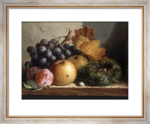 Still Life with Grapes, Apples, Plums and a Birds Nest by Edward Ladell