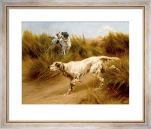 Setters in the Dunes by Thomas Blinks