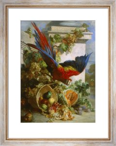Still Life with Parrot by Auguste Aristide Fernand Constantin